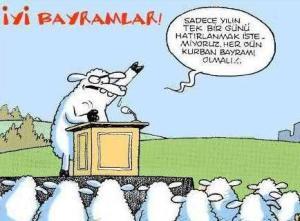 kurban-bayrami-koyun